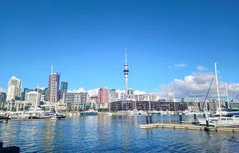都市で差は出る?ニュージーランドのホームステイ費用